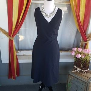 The limited beautiful pinstriped dress